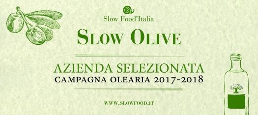 slow olive 2018